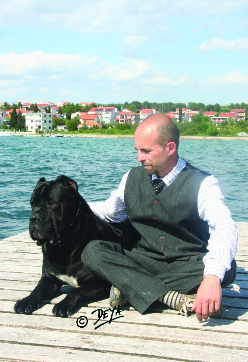 Spotlight on the cane corso modern molosser nicola mille geenschuldenfo Images