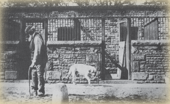 The kennels of Lyme Hall in the 1890s.