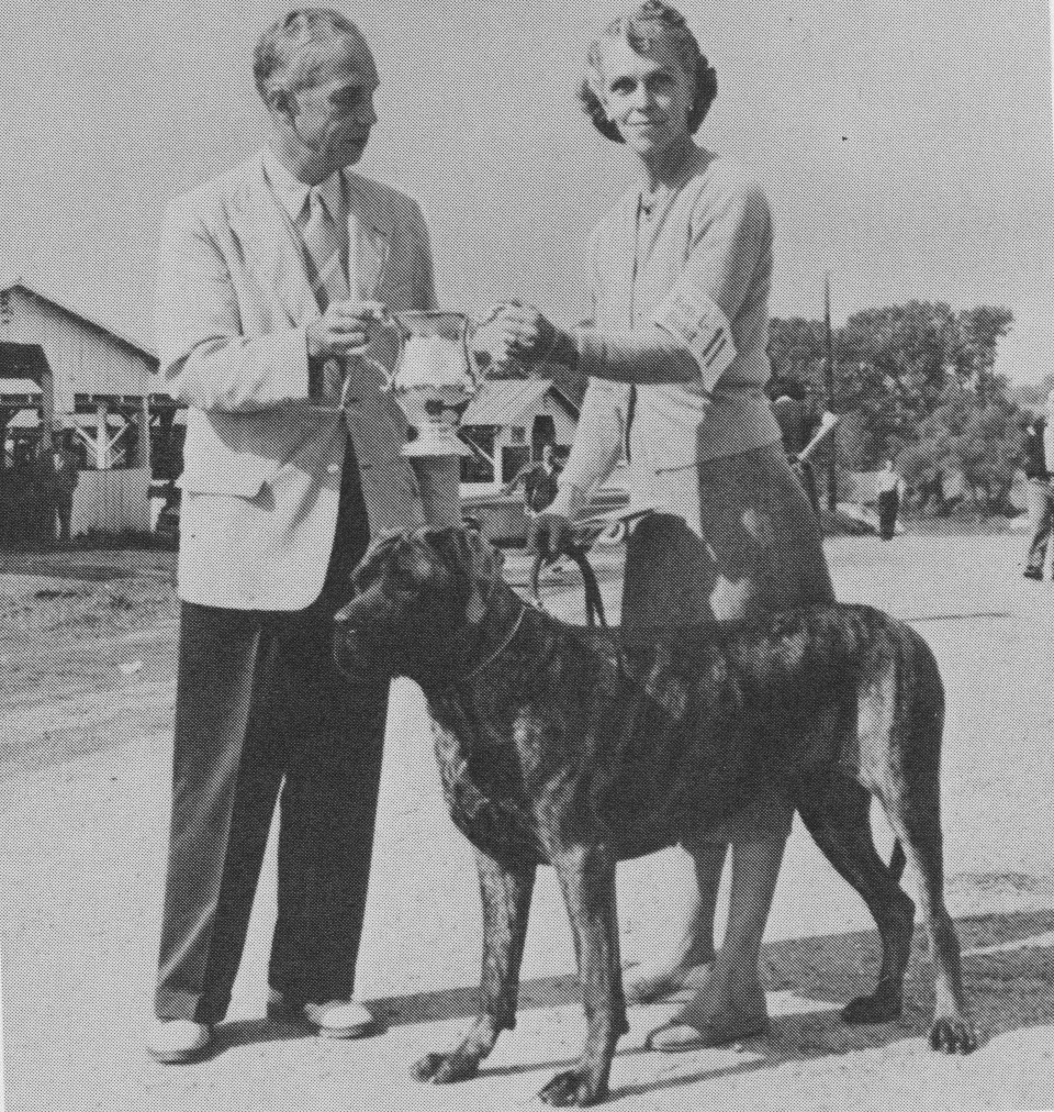 Moore showing one of her first British imports, Meps Berenice, to her national-specialty win in 1955. She was the first American bitch champion since 1937.
