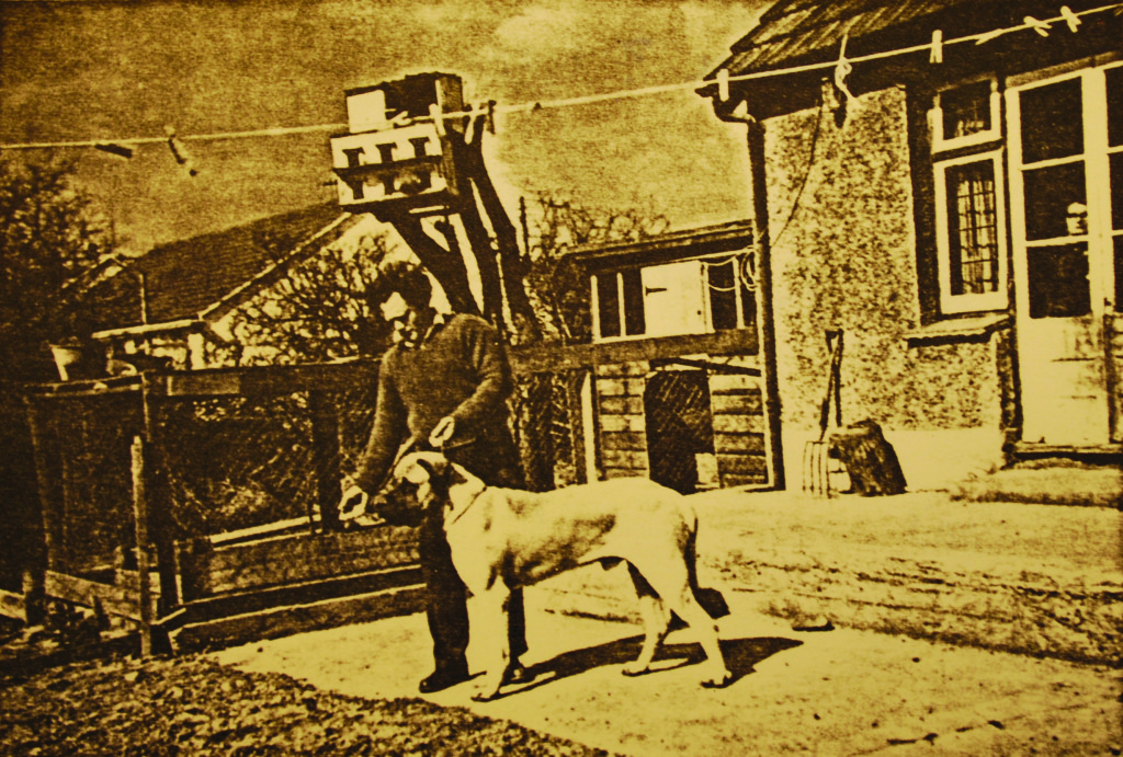 Ch. Rhinehart of Blackroc in England in the 1960s with his breeder William Hanson, before coming to Mooreleigh.