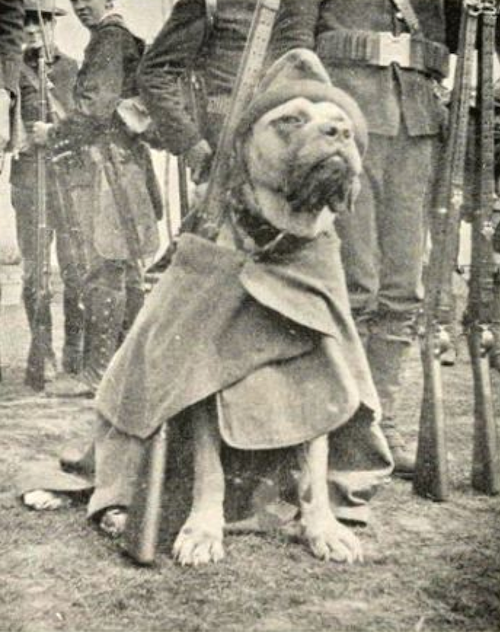 Jack Brutus, posing with his comrades in arms.