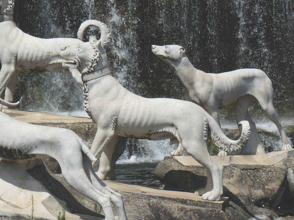 The light curls depicted on the Corso-like dogs suggest that coat length may have historically been short, but not smooth.